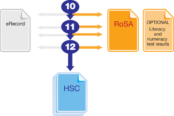 Image of a basic diagram showing which study years you can achieve the Record of School Achievement or 'RoSA' (which is after completing Year 10, in Year 11 or 12) and the Higher School Certificate or HSC (which is usually after completing Year 12). Diagram also shows you can get an eRecord or sit the optional Literacy and Numeracy tests in Years 10, 11 and 12.